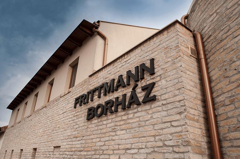 Frittmann-borház